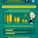 Marketing Budget Infographic